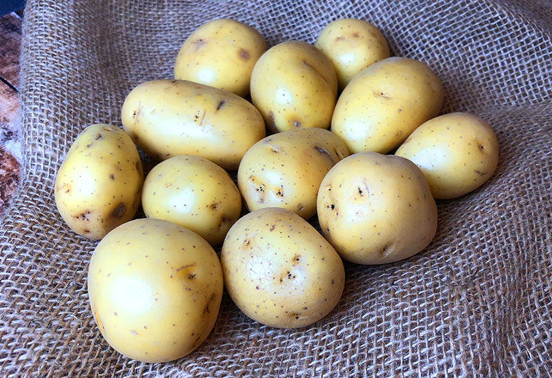 Yukon gold potatoes for air fryer roasted ranch potatoes recipe