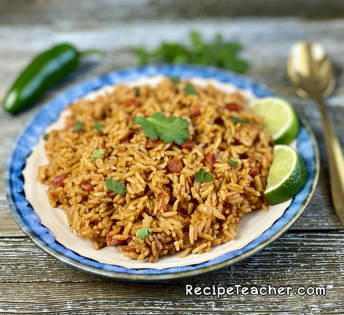 A plate of Instant Pot Spanish rice.